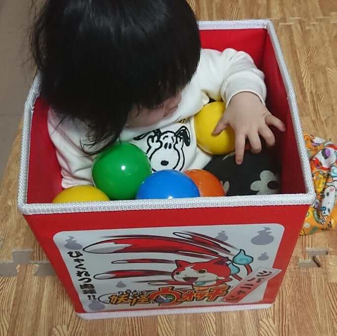 我が家の娘のマイブームは!?箱の中が居心地よくて箱に入るのが大好き♪