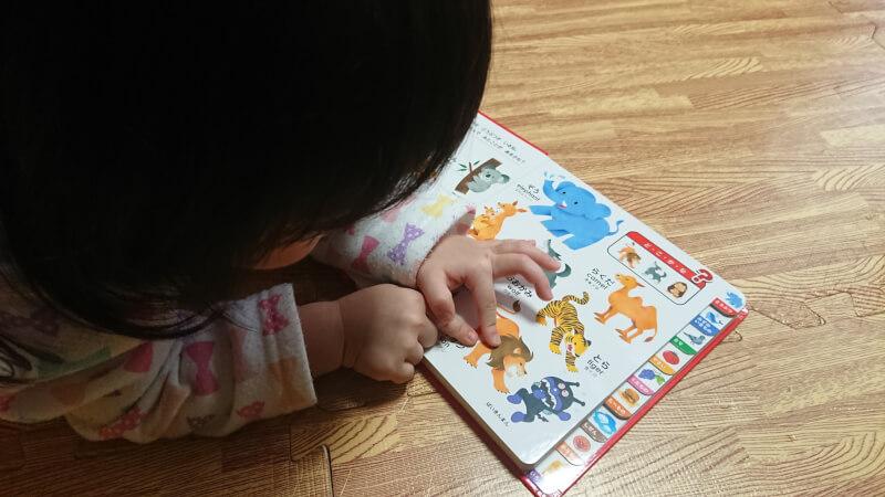 子供と楽しめる絵本♪アンパンマンのはじめてのことばえほん「わくわく」【娘と一緒に言葉の勉強】