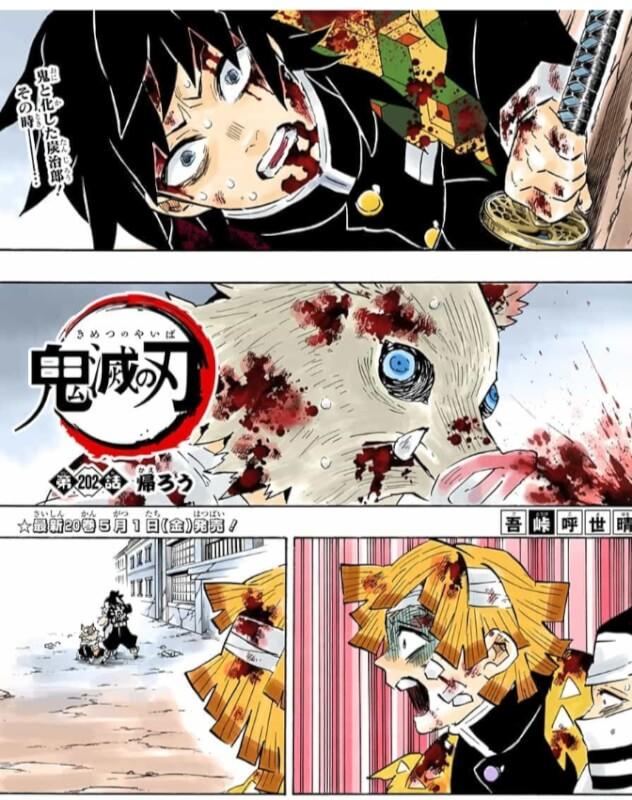 【 鬼滅の刃】 禰豆子(ねずこ)とカナヲは炭治郎を鬼化から救えるのか・・・【第202話】