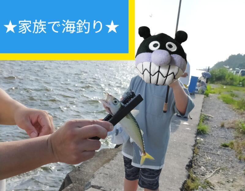 家族で海釣り♪サビキで子供と一緒に釣りタイム♪【 コスモスクエアと夢舞大橋】