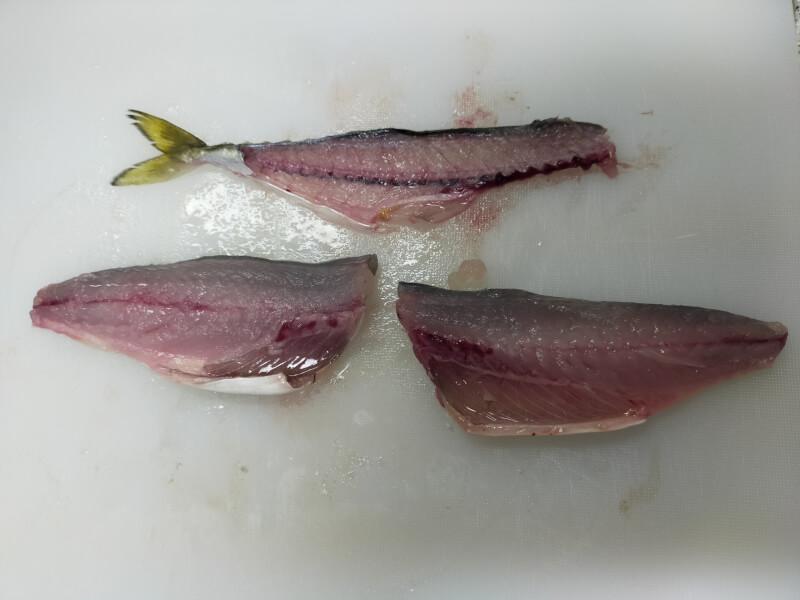 【大阪】サビキ釣りで大量150匹!!汐見埠頭(砂上げ場)でファミリーフィッシング【釣り】サバの三枚おろし