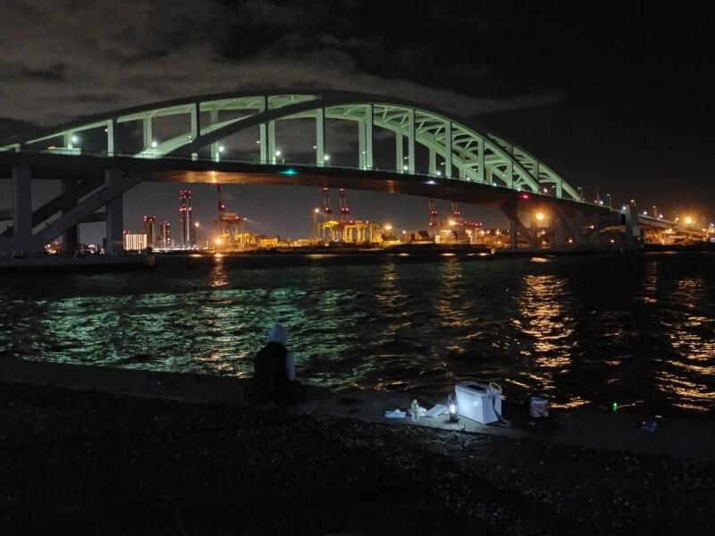 【大阪】きれいな夜景を見ながらまったり釣りタイム【夢舞大橋でナイトフィッシング】