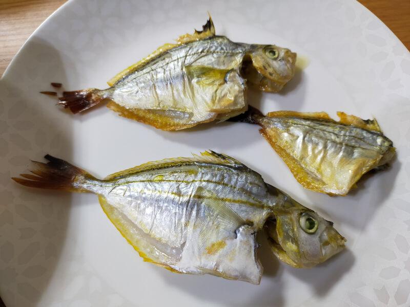 ヌルヌルすぎる奇妙な魚!?「ヒイラギ」食べてみたら絶品でした【ファミリーフィッシング】ヒイラギの塩焼き