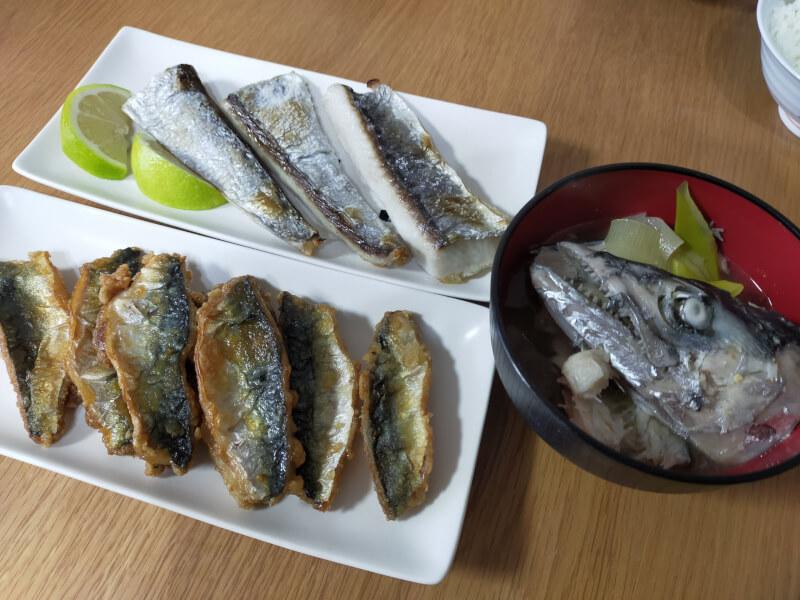 サゴシ(サワラ)をはじめて捌いて料理に挑戦!美味さに感動!?【ショアジギで人気の魚種】サゴシとサバの料理