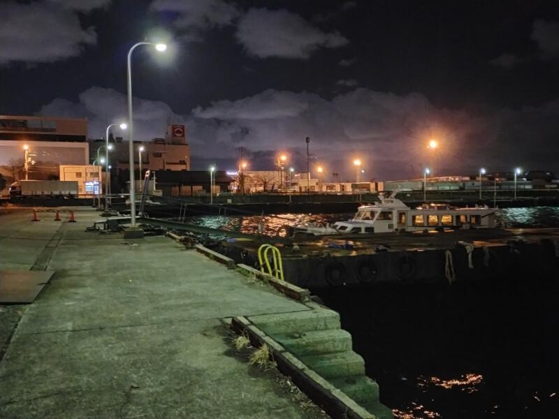 【2021年・初フィッシング】新年早々に南港で釣り♪メバルが釣れたよ♪【南港大橋】