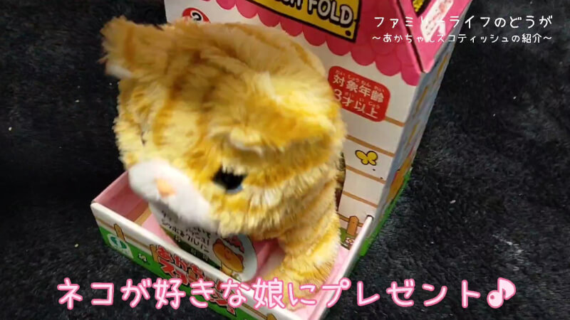 鳴き声や動きが可愛い猫のぬいぐるみ♪あかちゃんスコティッシュの紹介♪【レビュー】