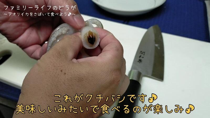 【アオリイカ】塩焼きと刺し身が絶品!さばいて調理に初挑戦!【さばき方や調理方法】アオリイカのクチバシ