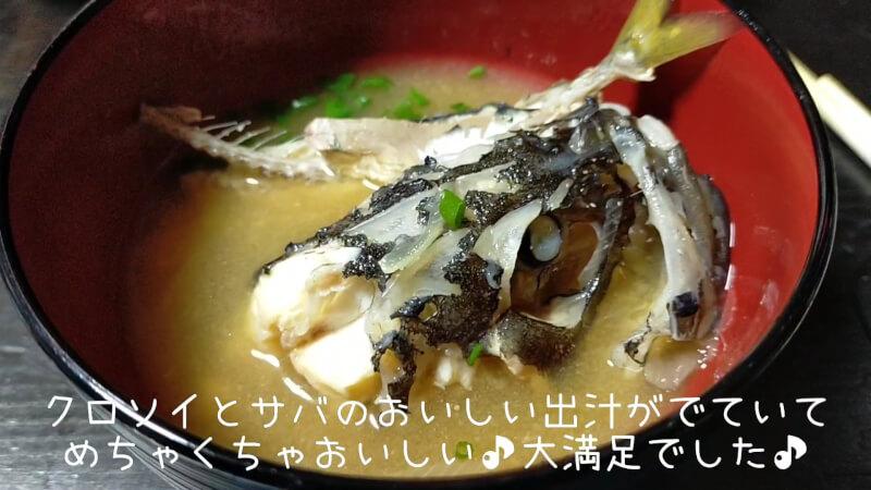 【南港大橋】夜のアオイソメの餌釣りでクロソイがヒット!美味しく調理して食べちゃいました♪【大阪】味噌汁