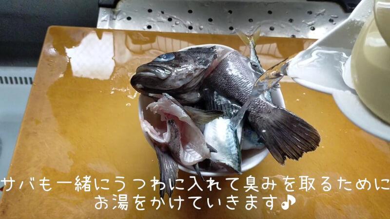 【南港大橋】夜のアオイソメの餌釣りでクロソイがヒット!美味しく調理して食べちゃいました♪【大阪】臭み取りに熱湯