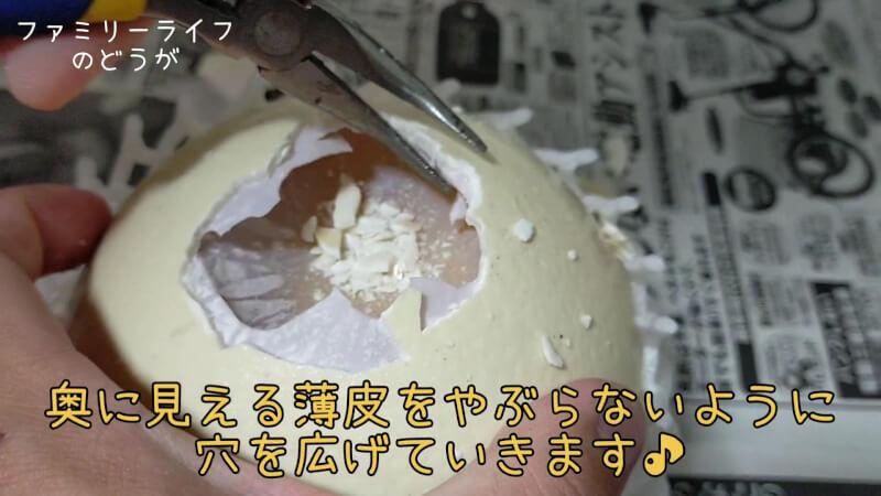【ダチョウの卵】巨大な卵を初めての殻割り♪プリンを作ってみた♪【美里オーストリッチファーム】殻の割り方